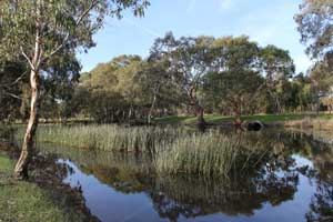 Ess Lagoon
